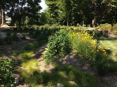 Running the Numbers: How Green Infrastructure Impacts the Economy   While green infrastructure carries major cachet and therefore sounds expensive, it is surprisingly affordable – in many ways more so than traditional systems.