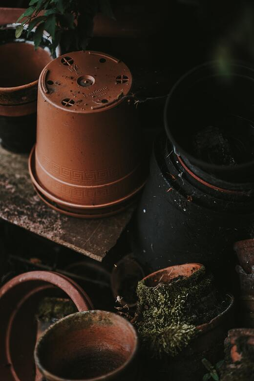 How to Make Biodegradable Pots Work for Green Roofing | While many alternative pots post problems of their own, there are a few companies doing it right.