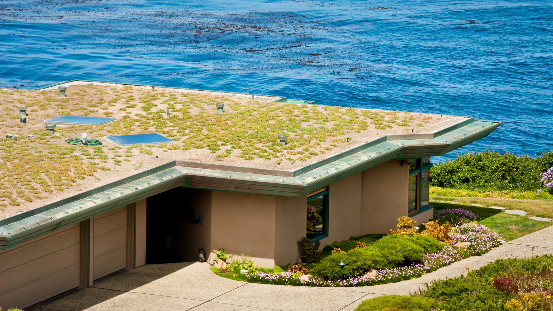 Do You Need Custom Media for a Green Roof? | Green roof media is important, but you might not have to get it custom made.