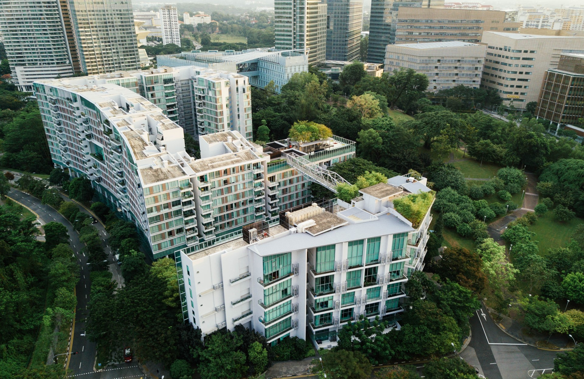 The Importance of Enforcing Green Roof Programs After the Build/Handoff   We need to do more than build green roofs. We need to care for them afterward.