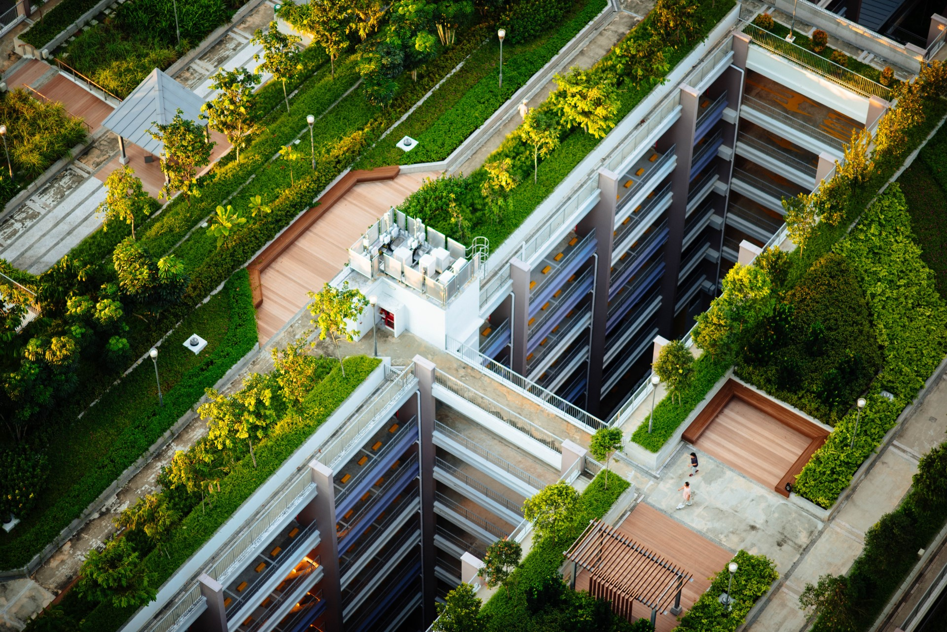 How to Maintain Green Infrastructure for Peak Performance Year Round | A green roof or other green system needs year-round help to do well.