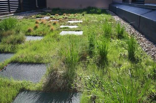 ecogardens-green-roof-pillar-6