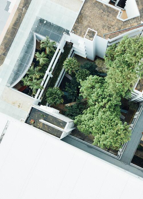 Green Roofs and Stewardship: Why One Can't Live Without the Other | Confusing maintenance with stewardship is a death knell for many green roofs.