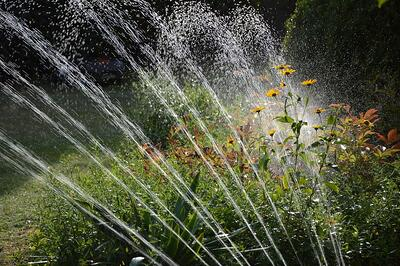 What Is Smart Irrigation and Who's Getting It Right? | There are a few rock stars in the field of smart irrigation today, and we're totally crushing on them.