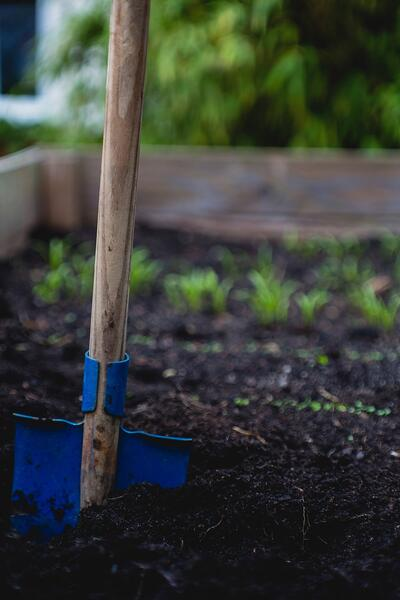 """Everything You Need to Know About Stewardship 