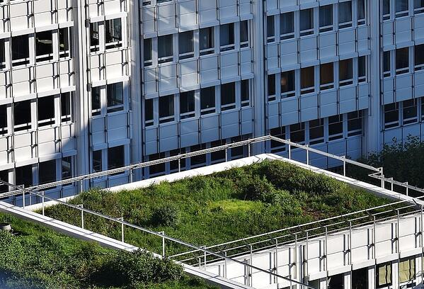 How to Choose the Best Stormwater Solutions   Green roofs help detain and retain stormwater onsite, so that we can reduce the impact during peak runoff times.