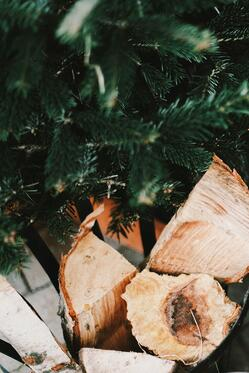 No, we're not giving up our Christmas trees come hell or high water. And yes, it is possible to go a sustainable route when it comes to those Christmas trees.