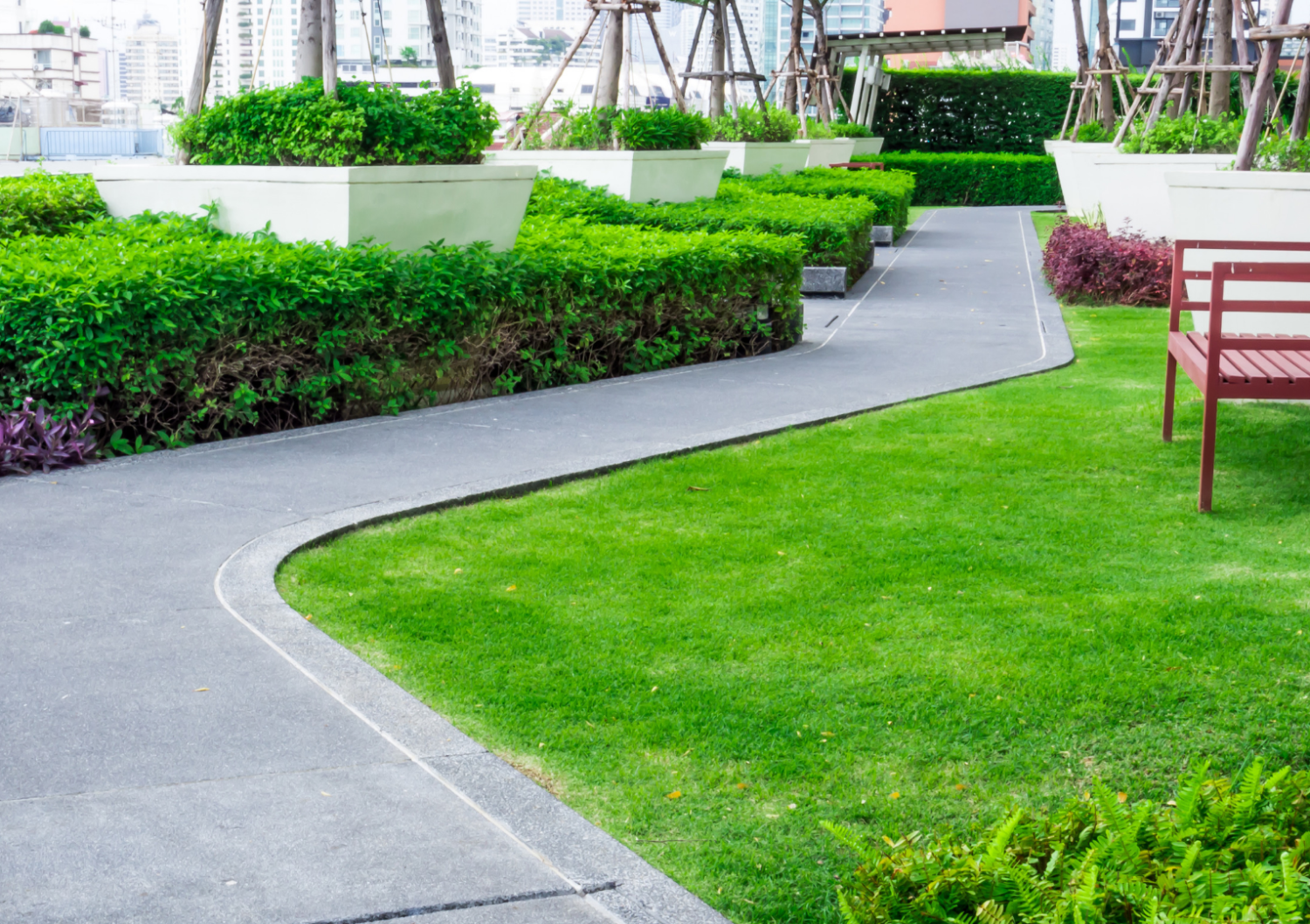 Are Green Roofs the Key to Employee Happiness?