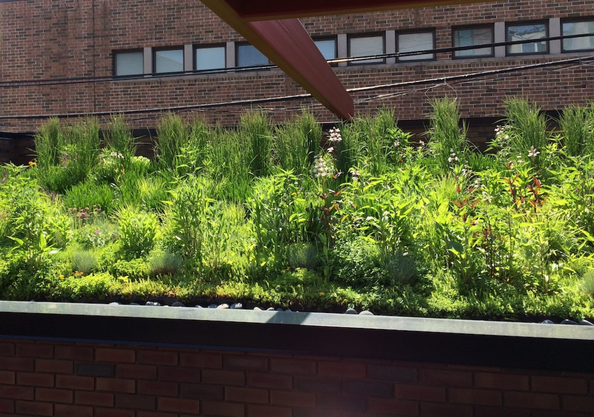 What Are The Layers Of A Green Roof