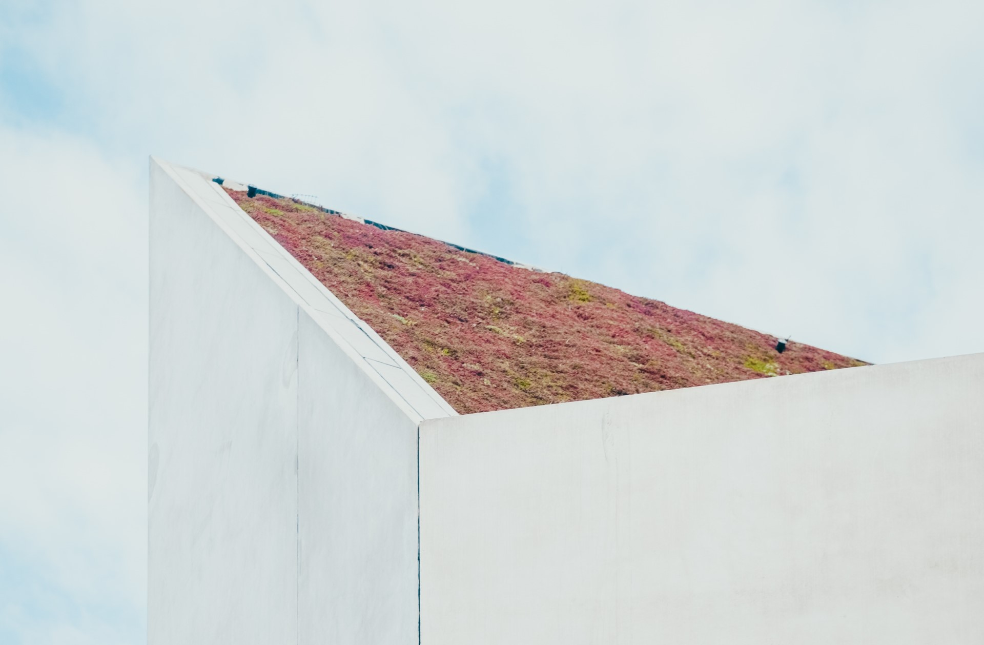 3 Financial Benefits of Maintaining a Green Roof