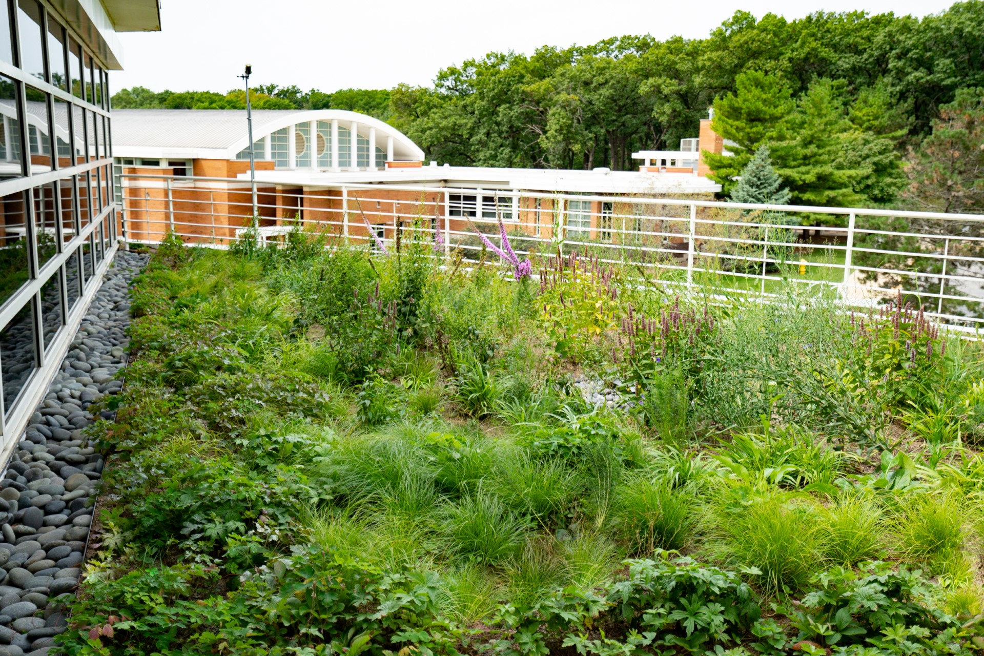 How Green Roof Consulting Benefited Orland Park