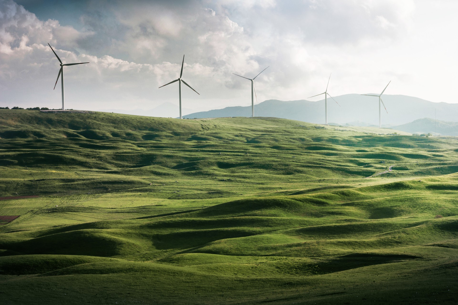 How Does Regular Stewardship Impact Energy Costs?