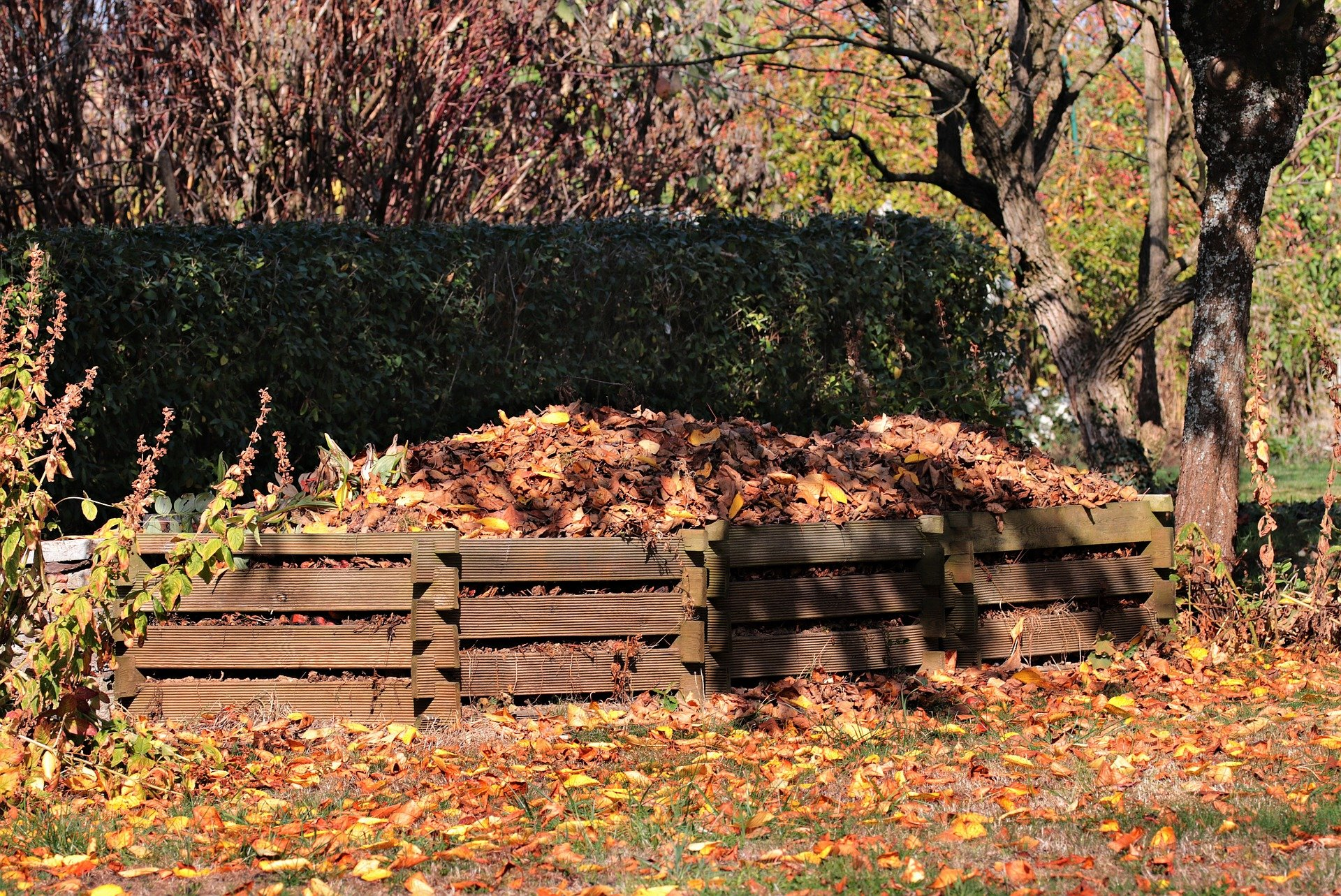 The Compost Story: Amazing Composting Benefits, According to the Stars