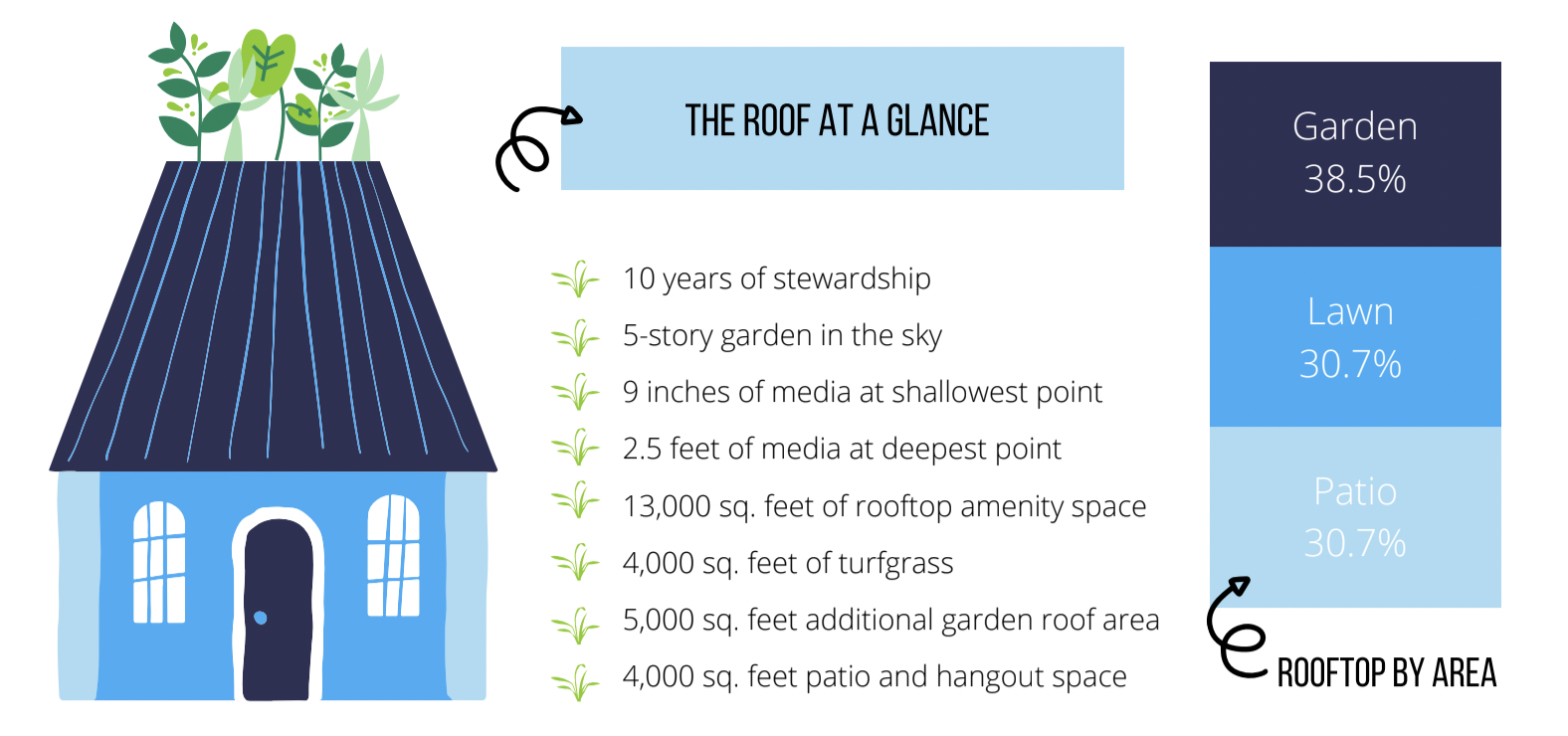 How Regular Stewardship Revived a Failing Green Roof